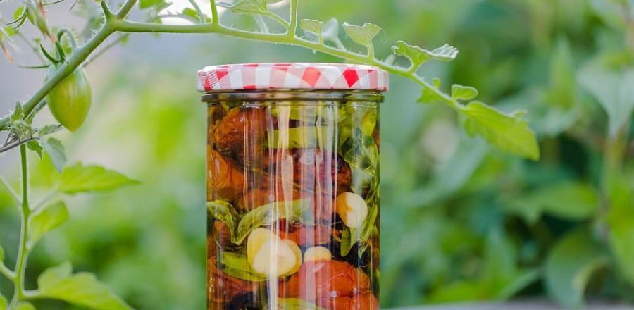 How to Ferment Foods? The Joy of Fermentation