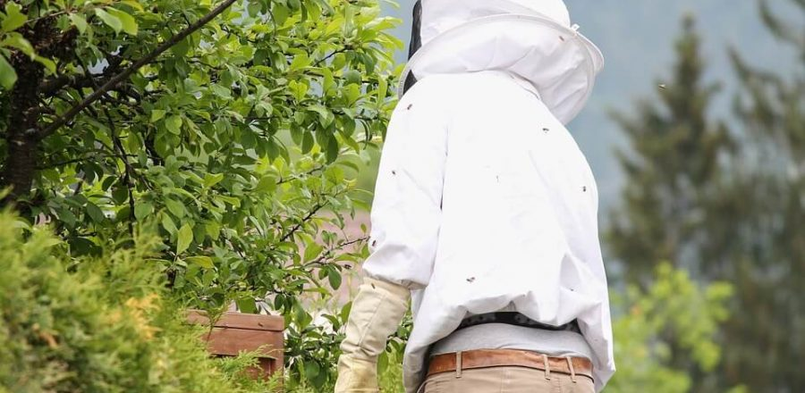Best Beekeeping Veils and Hats to Prevent Stings