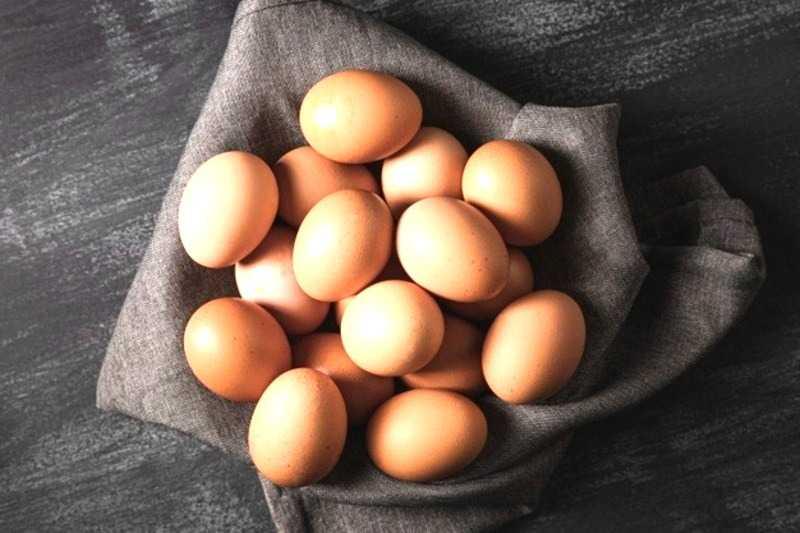cost of dozen eggs